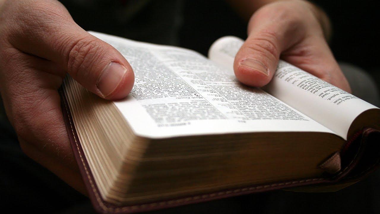 PALAVRA DE DEUS DE HOJE – O Seu Testemunho Vai Impactar Muitas Vidas! 📖
